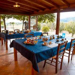 Farmhouse restaurant serving traditional Tuscan cuisine and organic food